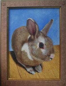 ウサギ ペット肖像画 動物絵画