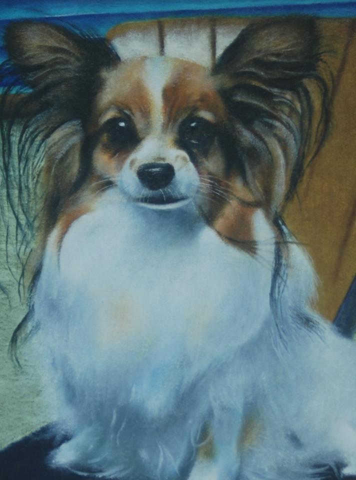 パピヨンの肖像画