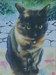 猫 cat ペット肖像画 動物絵画
