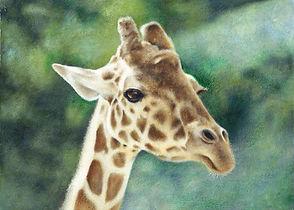 giraff2.jpg