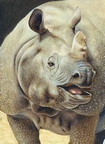サイ 肖像画 rhino