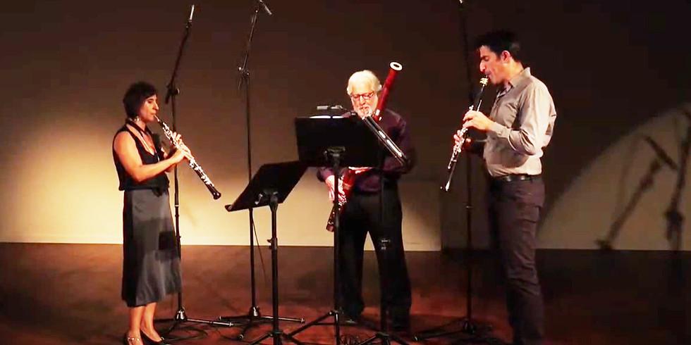 קונצרט 1 בסדרה הקאמרית של סולני אנסמבל המאה ה-21 לצפייה