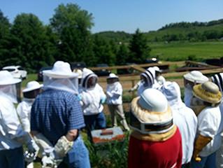 May 30 - Hive Splitting Workshop