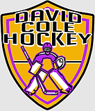 david logo-gray.png