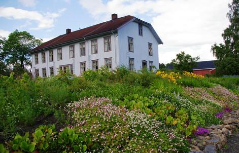 Sveinhaug gård