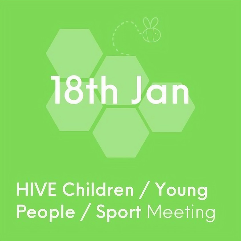 VCSE HIVE Children, Young People and Sport Network