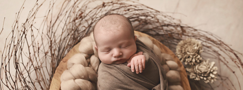 newborn boy in wooden bowl with branches