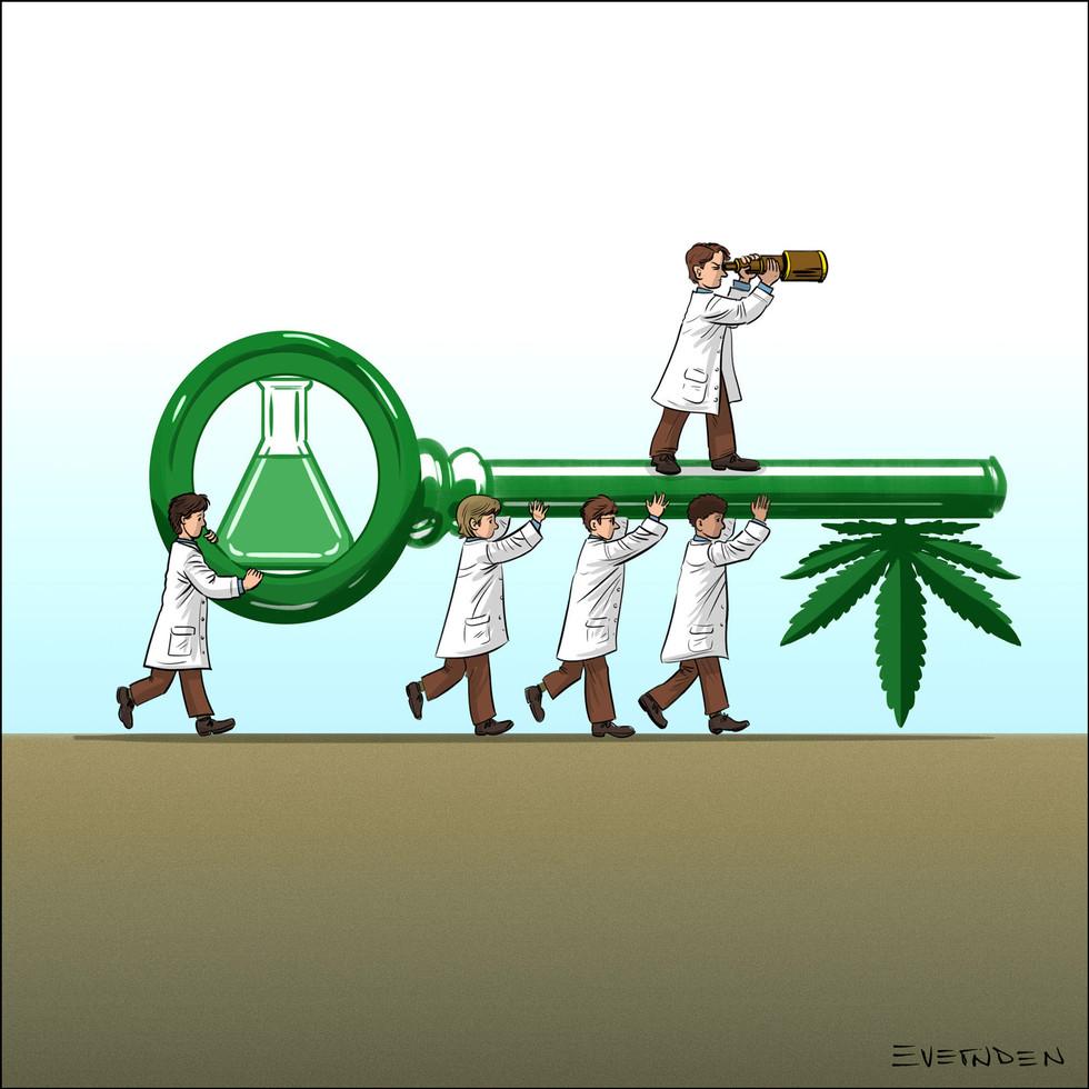 CannabisScience_by_DerekEvernden.jpg