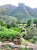 Kirstenbosch Botanical Gardens Cape Town South Africa