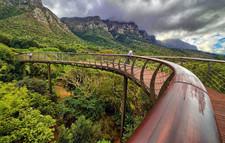Kirstenbosch - National Botanical Gardens - Circa Hotel