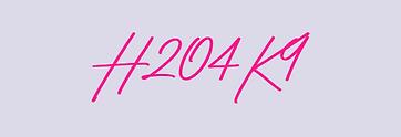 H204K9 initial May 2021.png