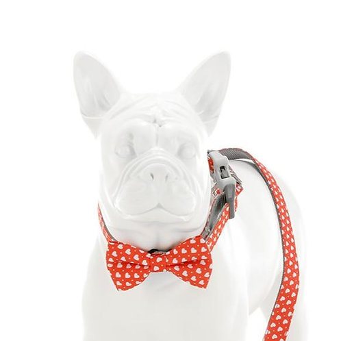 Hugo & Hudson Red & White Loveheart Bowtie - Small
