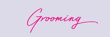 Grooming initial May 2021.png