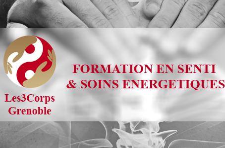 Formation en Senti & Soins Energétiques
