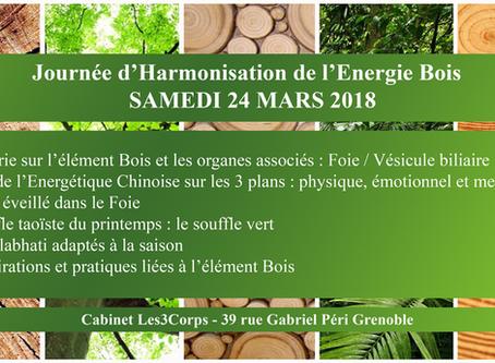 Journée d'Harmonisation de l'Energie Bois : SAMEDI 24 MARS 2018
