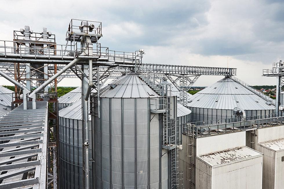 AG agriculture.jpg