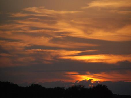Look Up! Cloud Appreciation Society