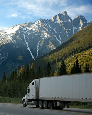 white-dump-truck-near-pine-tress-during-