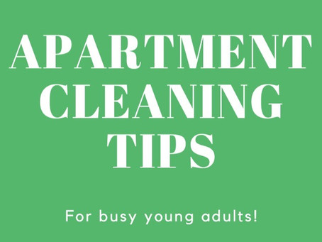Cleaning Tips For Busy Young Adults
