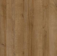 Arcata Oak
