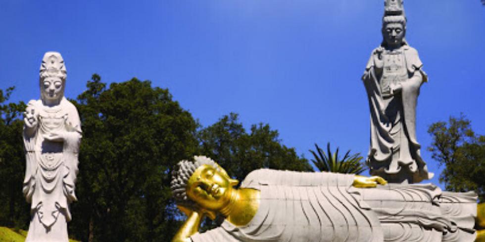 Excursão Nazaré & Jardim Buddha Eden