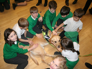 What are the Benefits of Therapy dog's in classrooms?