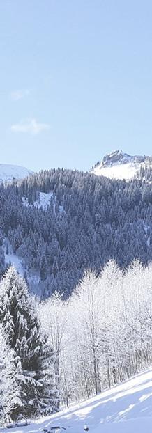 Winter - Facing South