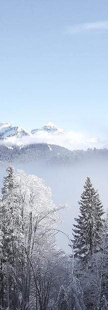 Winter - Facing North