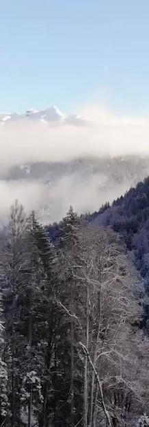 Fall - First snows