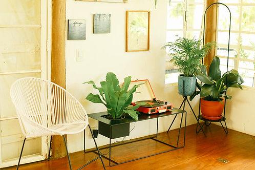 mesa de centro com cachepot