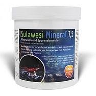 saltyshrimp-sulawesi-mineral-75-100g.jpg
