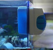 limpia-vidrios-magnetico-para-pecera-acu
