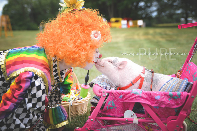 Colors the Clown