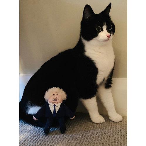 Boris Cat Toy