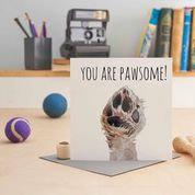 You Are Pawsome