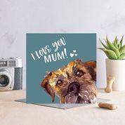 I Love You Mum. Border Terrier