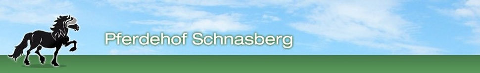 LOGO_Schnasberg.jpg