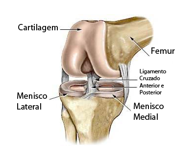 meniscos joelho fisioterapia