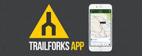 trail forks.jpg