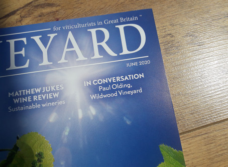 On the cover of vineyard magazine