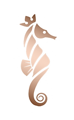 300px-Seahorse-Alone.png