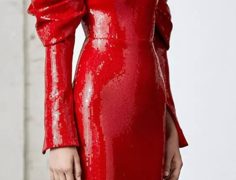 Red Long Sleeve Shining Dress