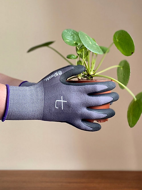 niwaki gardening gloves.