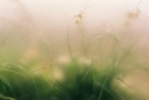 London Haze print.