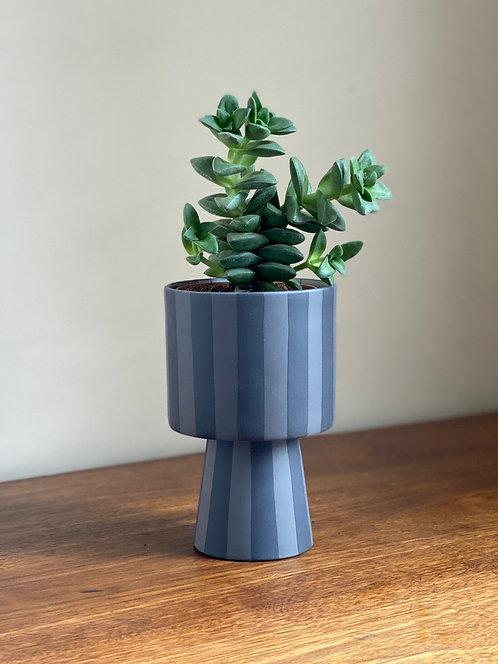 toppu pot, small.