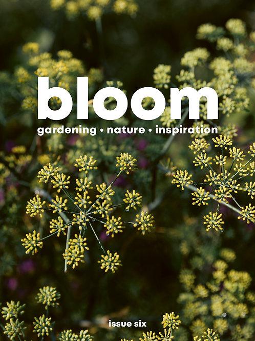 bloom magazine issue 6