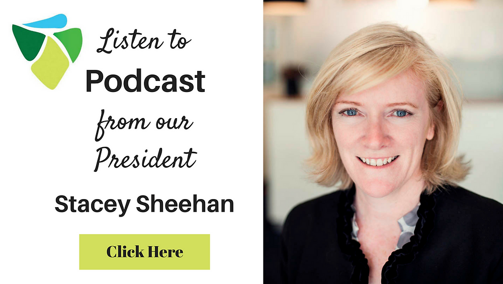 Podcast by DCCI President Stacey Sheehan