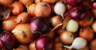 how-to-store-onions-1296x728-feature.jpg