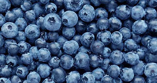 blueberries-1296x728-feature.jpg