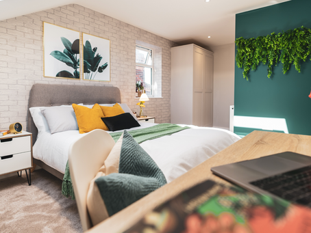Co-living vs HMO - what is the difference?
